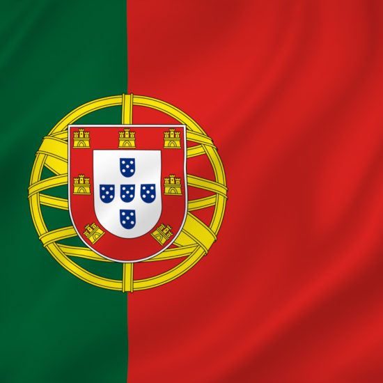 Portugal national flag background texture.